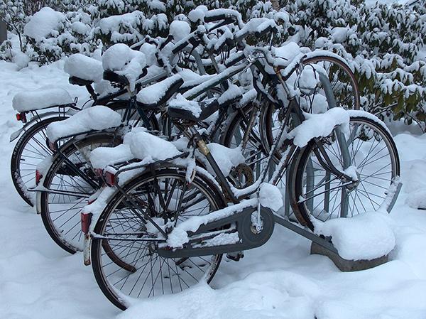 Зимой не разрешат парковаться на велополосах.